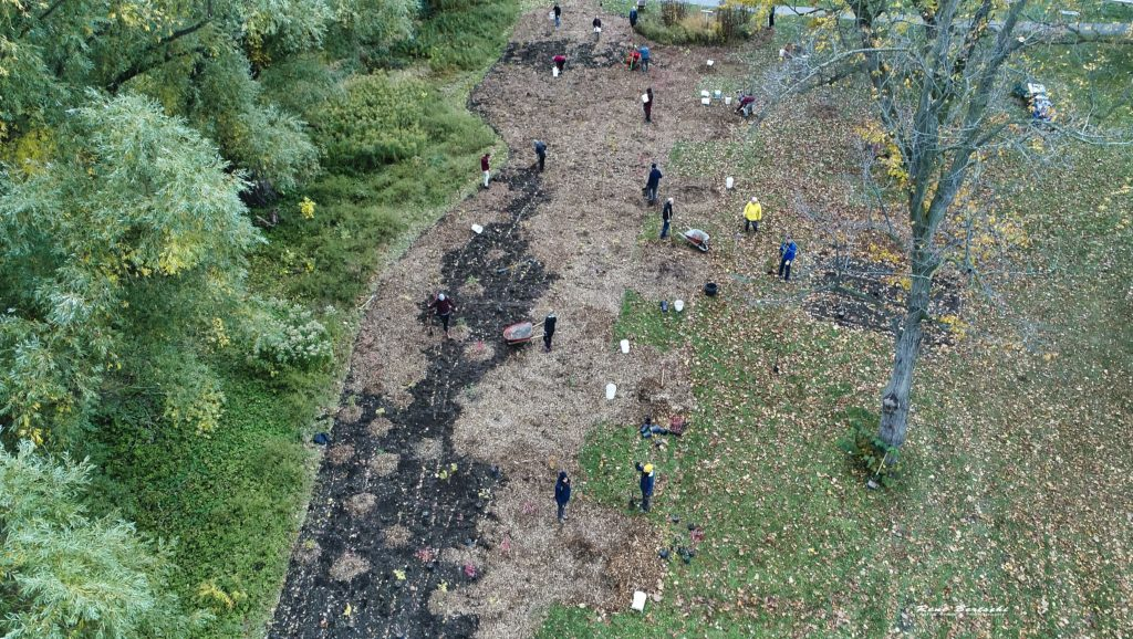 Aerial view of Oct 24 2020 tree planting in progress of extended area along One Mile Creek 4