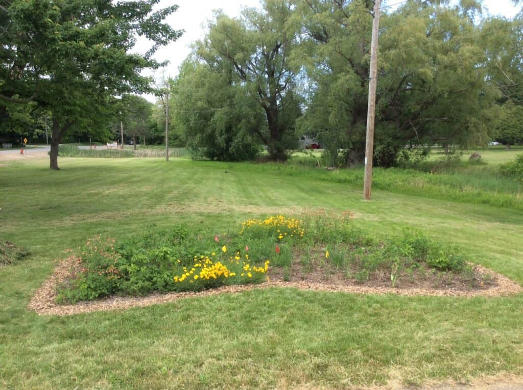 King and John pollinator garden at the beginning of the season after clean-up and mulching  in 2018.