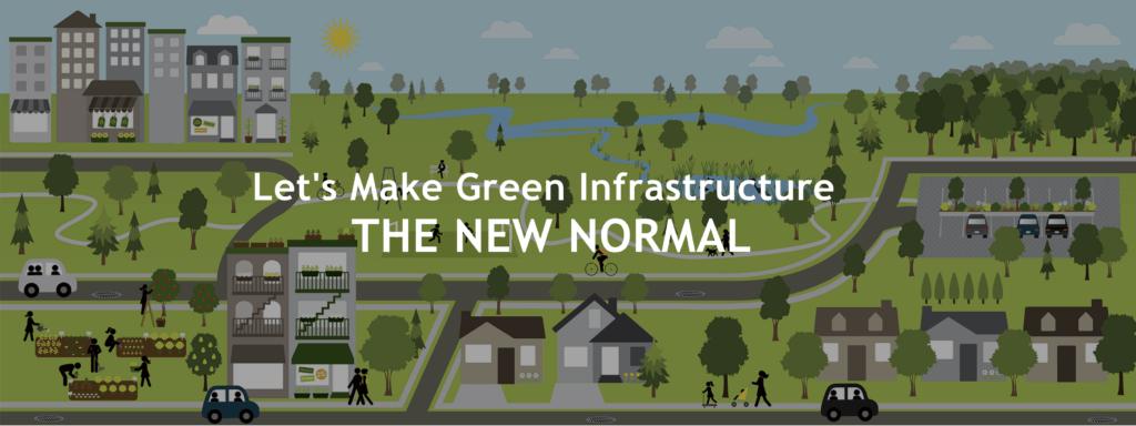 Screen Shot Green Infrastructure Coalition website grqphic